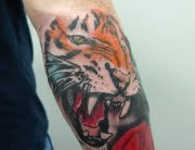 tiger tattoo by max
