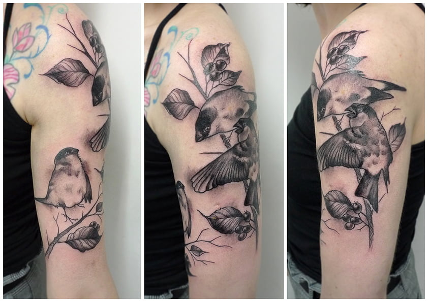bull finches tattoo