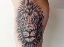 Calum Lion head